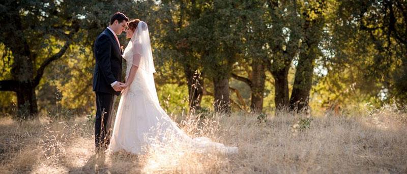 Mail Order Brides Top 5 Websites Where To Buy Mail Order Brides in Roseville